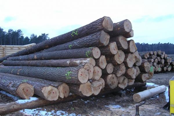 plac-budowy-02E24A9633-5CB0-DE95-94A8-B595744A7485.jpg